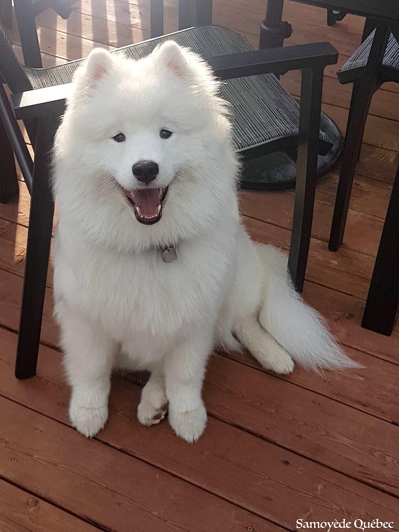 Naya 8 months
