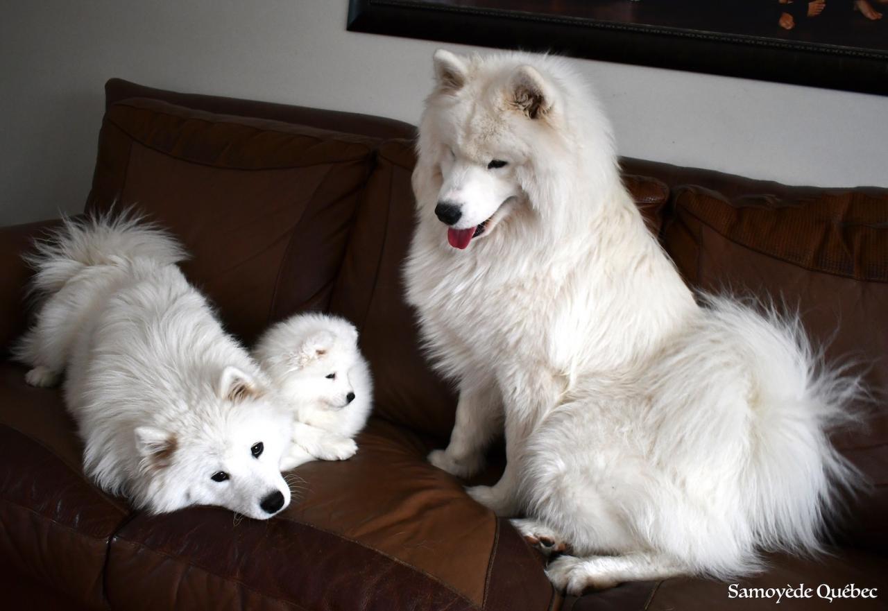 Nushka avec ses parents