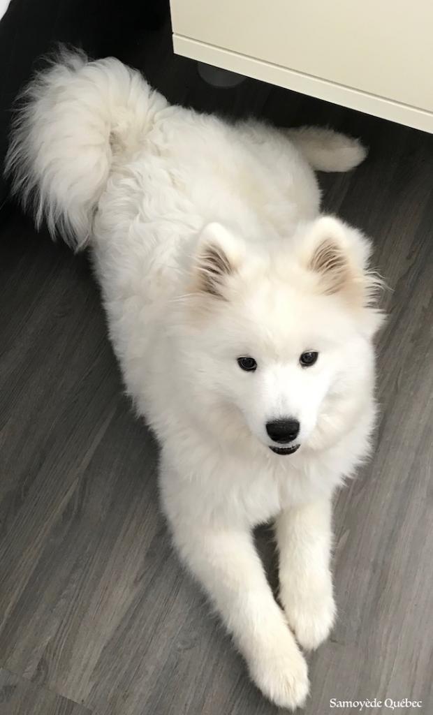Luna 5 mois