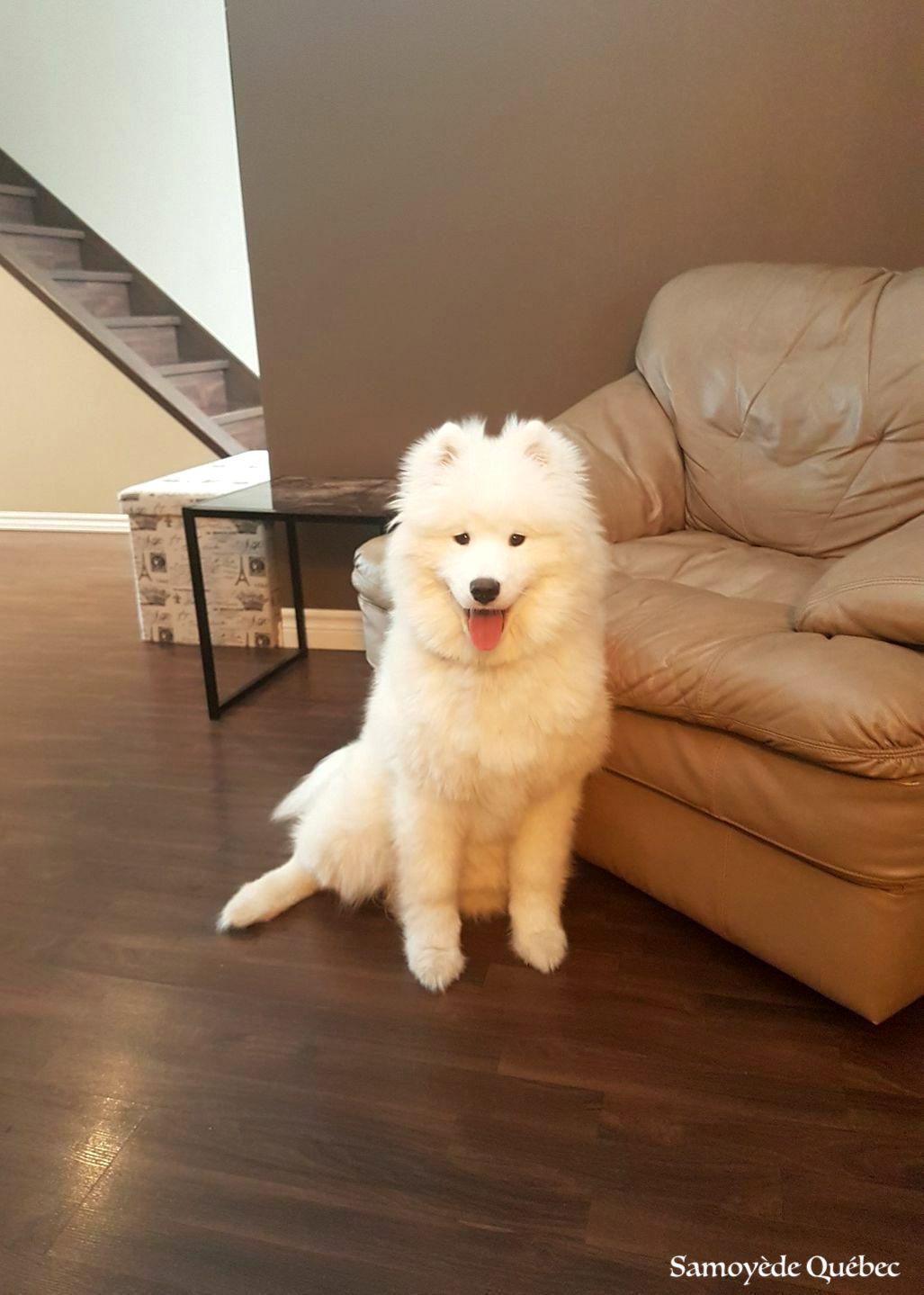 Naya 6 mois