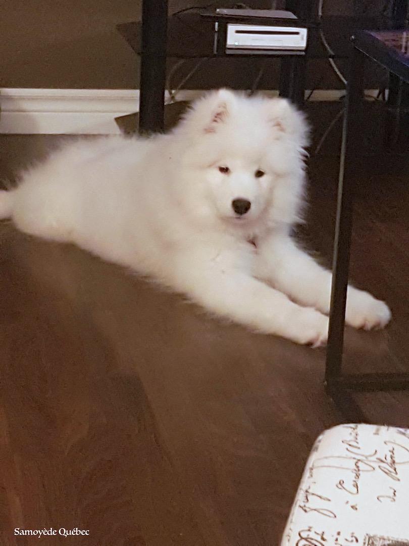 Naya 5 mois