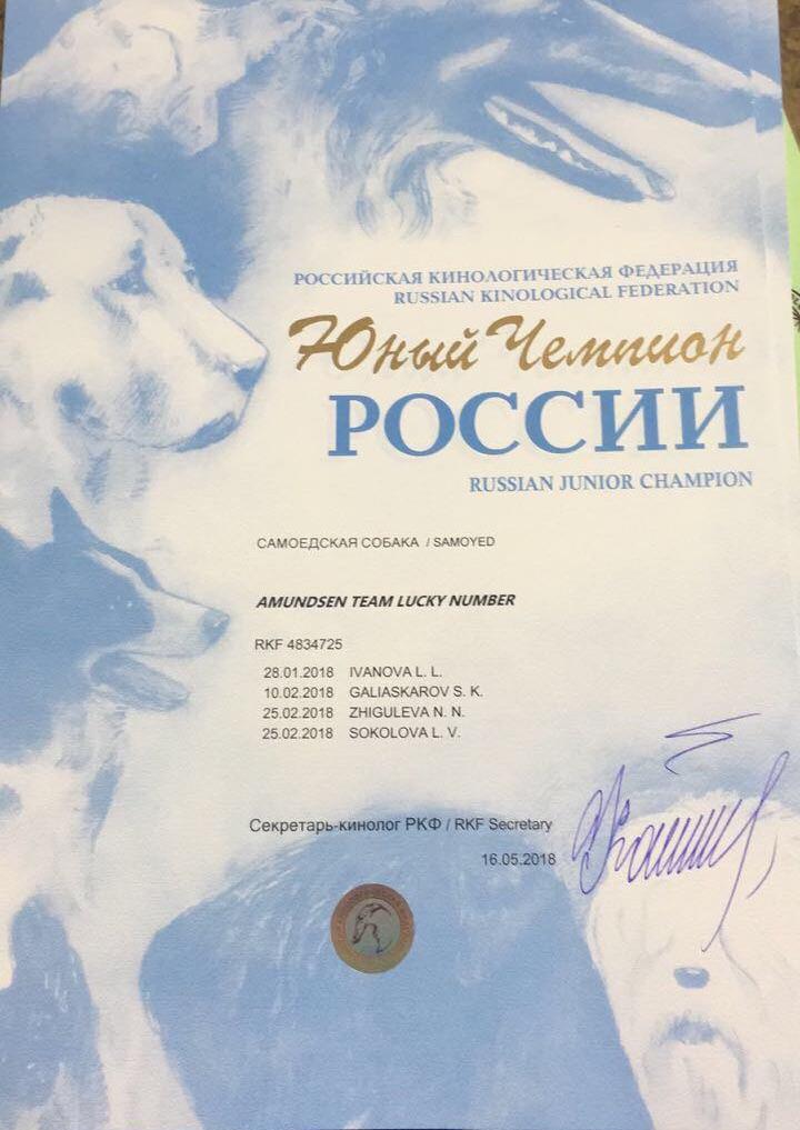 Titre champion junior de russie de balto